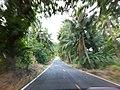 แถวๆ เขาเขียว ชลบุรี - panoramio (48).jpg