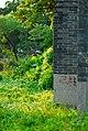 大学城一角Scenery in Guangzhou, China - panoramio.jpg