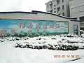 安徽省含山县含城春节雪景 - panoramio - luchangjiang~鲁昌江 (8).jpg