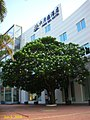 深圳 六月海酒店 June Sea Hotel ,Shenzhen - panoramio.jpg
