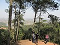 雨母山 - panoramio (3).jpg