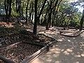 행당역 - 대현산공원 7.jpg