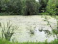 020613 Manor park in Pilaszków - 03.jpg