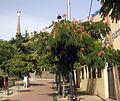 043 Carrer de Valeta d'Arquer, al fons la torre de Bellesguard.jpg