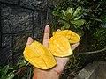 0526Cuisine food in Baliuag Bulacan Province 78.jpg
