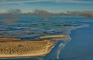 Wadden Sea - Image: 13 09 29 nordfriesisches wattenmeer Ralf R 19