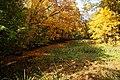 131103 Hokkaido University Botanical Gardens Sapporo Hokkaido Japan20s3.jpg