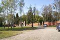 1346viki Cmentarz żydowski przy ul. Lotniczej. Foto Barbara Maliszewska.jpg