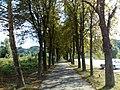 15.08.2013. Krapinske Toplice, Kroatien - panoramio (5).jpg