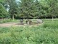 2002年 长春动植物园 斑马 zebra - panoramio.jpg
