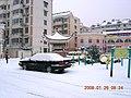 2008年雪灾景色 - panoramio.jpg