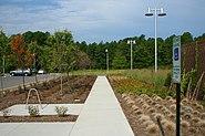 2008-07-25 Research Triangle Park Headquarters sidewalk