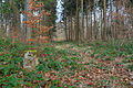 2011-02-13-chemin-4.jpg