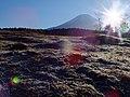 2013-12-02 Michinoeki Asagiri Kogen(道の駅「朝霧高原」静岡県富士宮市)DSCF9921.jpg