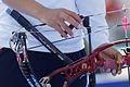 2013 FITA Archery World Cup - Women's individual compound - Semifinals - 27.jpg
