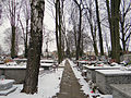 2013 Orthodox cemetery in Płock - 13.jpg