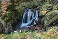 2014-04-09 15-47-12 cascade-savoureuse-lepuix.jpg