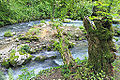2014 Nowy Aton, Historyczny szlak w kanionie rzeki Psyrccha (14).jpg