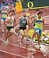 2016 US Olympic Track and Field Trials 2252 (28153023392).jpg
