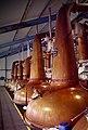 2019-05-06 Laphroaig Whisky Stills.jpg