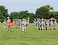 233rd Transportation Company cases colors DVIDS427203.jpg