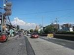 2387Elpidio Quirino Avenue NAIA Road 38.jpg