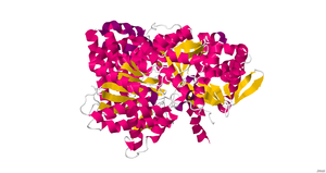 Myophosphorylase - Image: 3MSC