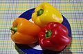 3 colour variations of paprika.jpg