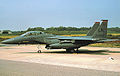 494th Fighter Squadron - McDonnell Douglas F-15E-52-MC Strike Eagle - 91-0321.jpg