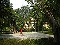 71Mehan Garden Ermita Manila Universidad de Manila 42.jpg