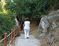 A@a walking - panoramio.jpg