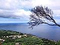 Açores 2010-07-23 (5164328775).jpg