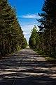 A120 Матокса - пос. им Морозова - concrete road - panoramio.jpg