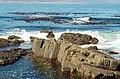 AHI Treasures of Southern Africa 3-07 0173 N (554679243).jpg