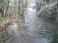 A frosty scene at the stream in Corhampton - geograph.org.uk - 1114964.jpg