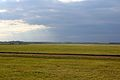 A view close to the Rowley Mile, Newmarket, UK.jpg