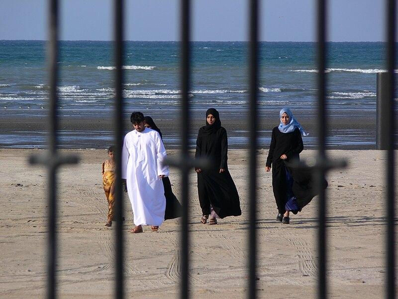 https://upload.wikimedia.org/wikipedia/commons/thumb/e/e7/A_walk_on_the_beach_-_P1050437.jpg/800px-A_walk_on_the_beach_-_P1050437.jpg