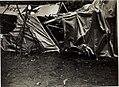 Abgestürztes Flugzeug. (BildID 15576376).jpg