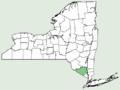 Achillea filipendulina NY-dist-map.png