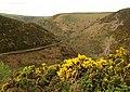 Across Hill Brook Combe - geograph.org.uk - 1285919.jpg