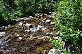 Affluent de la rivière du Gouffre - 1.jpg