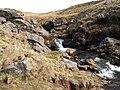 Afon Giedd - geograph.org.uk - 1801853.jpg