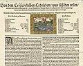 Aigle 1584; leaflet by Samuel Apiarius in Basel printed in 1584.jpg
