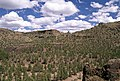 Alder Springs, Crooked River National Grassland, Ochoco National Forest (35758549404).jpg