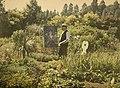 Alfonse Van Besten, Van Besten painting in his garden 1909, autochrome 9 x 12.jpg