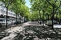 Allée Georges-Besse, boulevard Edgar-Quinet, Paris 14e.jpg