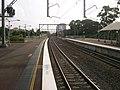 Allawah railway station looking south.JPG