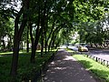 Along the small park - panoramio.jpg