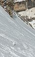 Alpenschneehuhn Lasties Tal Sella Dolomiten.jpg