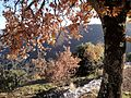 Alta Garrotxa-Rocabruna Castle3.JPG